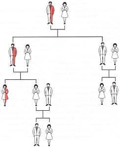 anemia-mediterranea-malattia-genetica