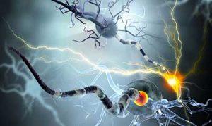 epilessia neuroni